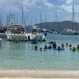 Beach Bar Pic of the Week – Dinghy's Beach Bar, St. Thomas, US Virgin Islands