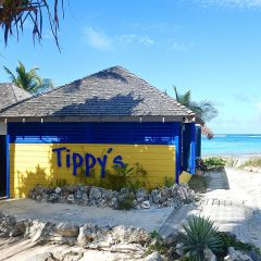 Tippy's Beach Bar: Still Topping the Bill on Eleuthera